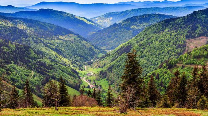 Feldberg (Berg im Schwarzwald) - Blick ins Tal