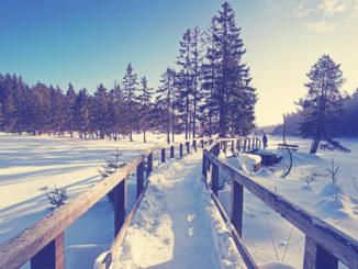 Thüringer Wald - Wandern im Winter
