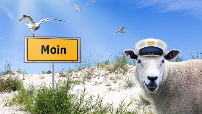 Urlaubsregion Ostfriesland an der Nordsee: Moin!